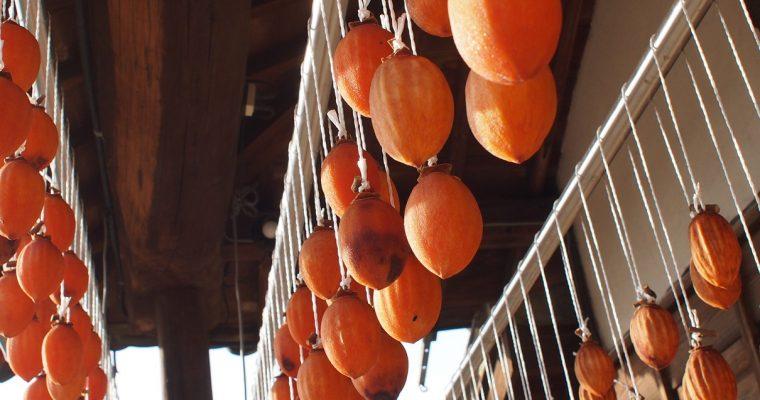 今週も柑橘特集!そして有機農園小七郎さんのところへお邪魔してきました♪